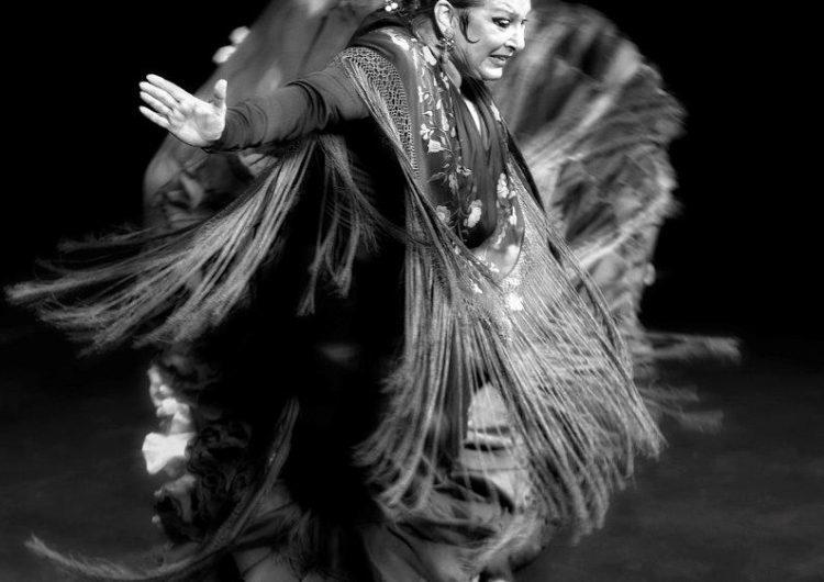 Muestra programadores internacionales, FlamencoEñe, del 17 al 19 de mayo en Málaga.