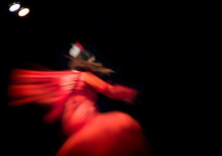 """Iniciativas de flamencos solidarios para """"llenar el carrito"""" gratis con propuestas entretenidas y diversas"""