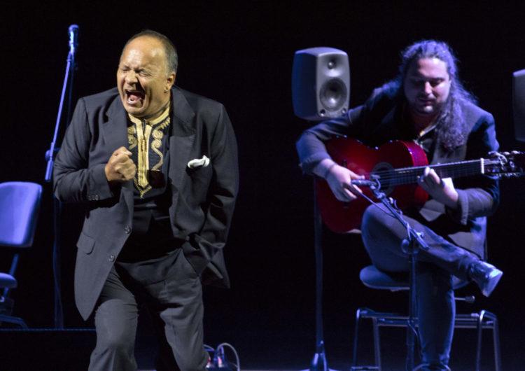 Flamenco en el Auditorio Nacional: todos los meses un gran artista