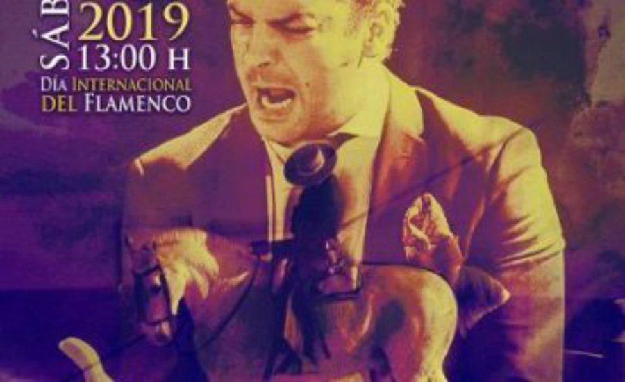 Flamenco y caballos en el Día Internacional del Flamenco