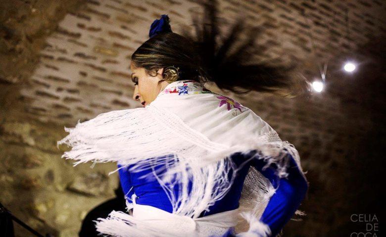 """""""Sin tablaos no hay flamenco"""", la Asociación Nacional de Tablaos Flamencos reclama medidas urgentes"""