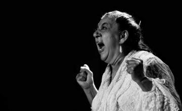 Círculo Flamenco de Madrid presenta su programación y Festival