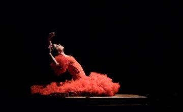 Arranca el Congreso Mundial del Flamenco en Jerez