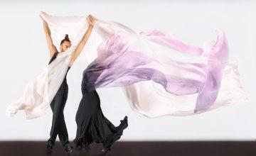 Flamenco Real presenta 14 espectáculos y 42 funciones, a partir del 4 de noviembre